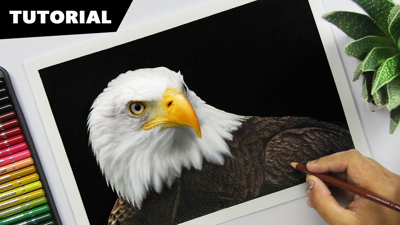 eagle tutorial for beginners